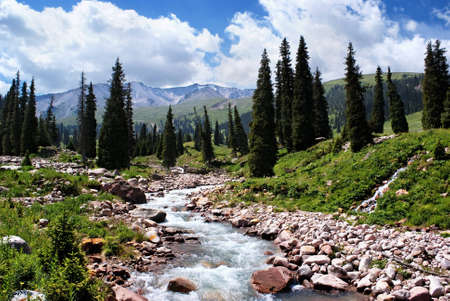 Summer mountain valley, Kazakhstan, Tyan-Shan mountains Stock Photo