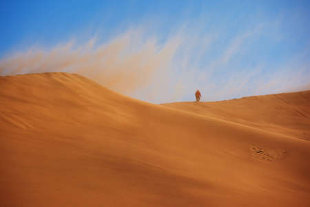 Desert Storm and the lonely traveler photo
