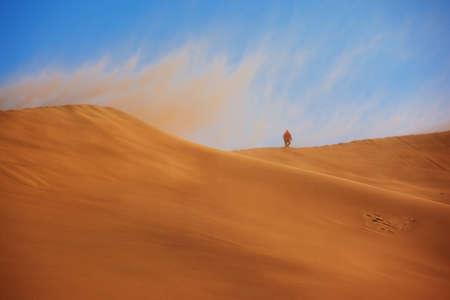 desert storm: La tormenta del desierto y el viajero solitario