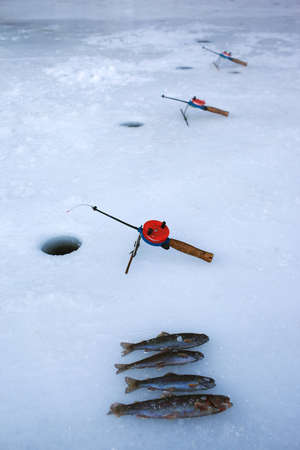 Little winter fishing rods in the hole and fish on ice photo