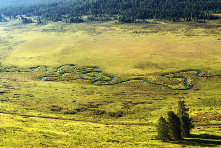 Curved small river on meadow in Altai mountains, Kazakhstan photo