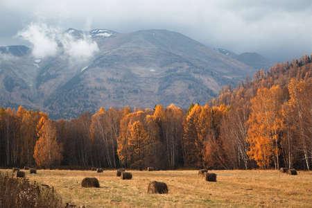Autumn in Altai mountains, Kazakhstan after rain Stock Photo - 10452557