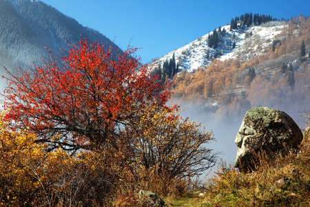 First snow in autumn mountains of Tien Shan, Kazakhstan