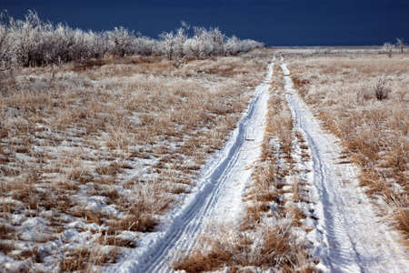 Country road in winter on the prairie Stock Photo - 10907795