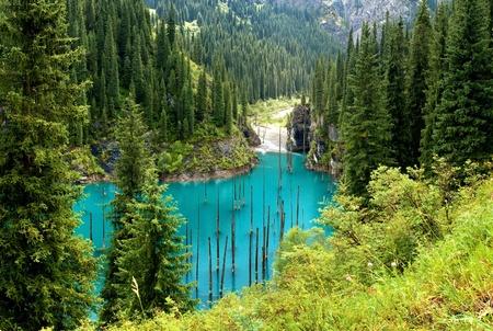 Lake Kaindy in Tien-Shan mountains, Kazakhstan Фото со стока