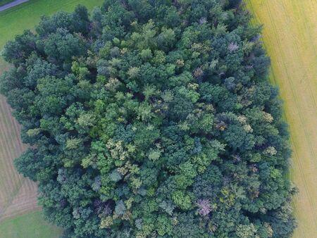Una vista del bosque desde arriba Foto de archivo - 78605820