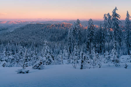 Sunset from the top of the mountain in Carpathian range. Landscape with winter forest and lots of snow. Glowing sky in the golden hour in Beskid mountains, Czech Republic.