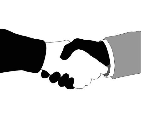 mani che si stringono: Stringere la mano amichevole delle due mani su uno sfondo bianco