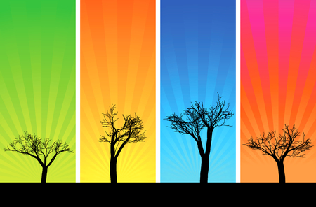 climate morning: Silhouettes of trees on a multicolored backgrounds