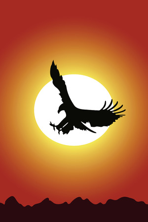 Eagle on a background of red sunset Vector