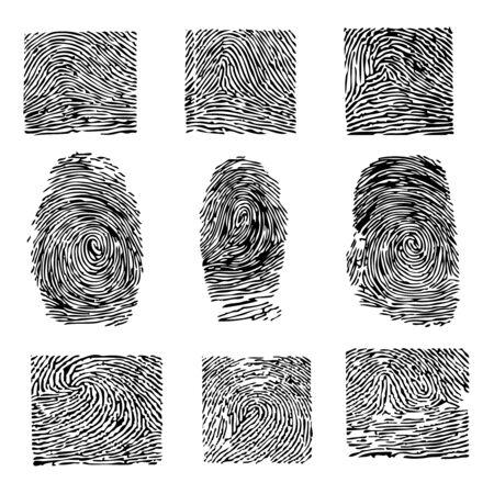 A print of a human finger. Dactyloscopy Stock Vector - 8273866
