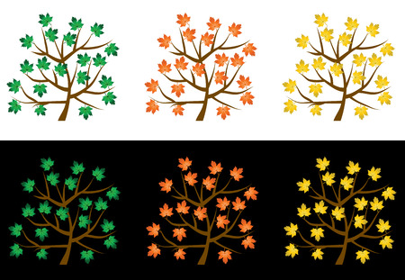 Trees with leafs on a white background Vector