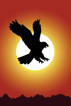 red sunset: Eagle on a background of red sunset