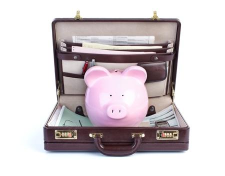 Pig and portofolio on a white background Stock Photo - 8466365