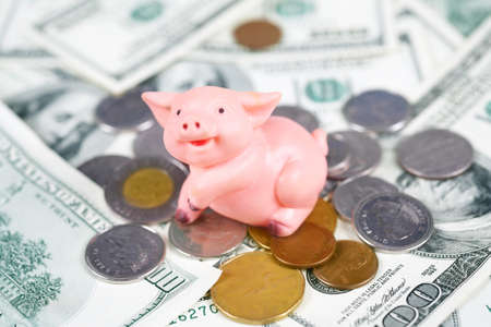 Pig bank and a lot of money coin and bills. Stock Photo - 8727902