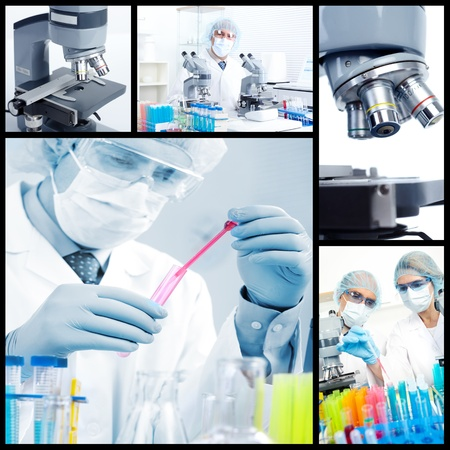 Science team working with microscopes in a laboratory Stock Photo - 12894523
