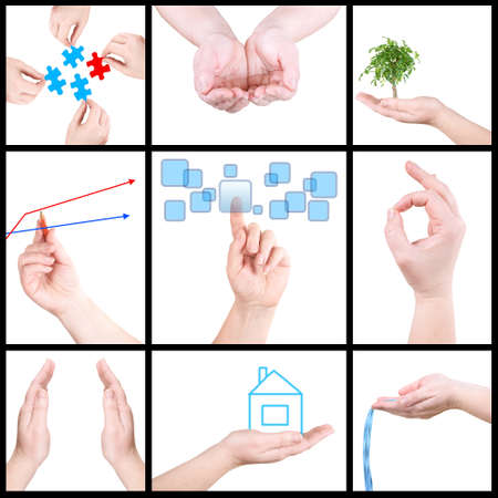 Collage from palms on a white background Stock Photo - 9135660