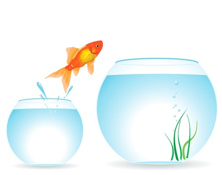 The gold fish jumps out of an aquarium Stock Illustratie