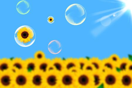 Sunflower and soap bubble on a blue background photo