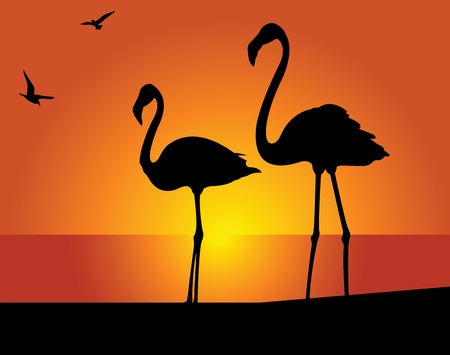 Silhouette of the flamingo on a background of the evening sky Stock Illustratie