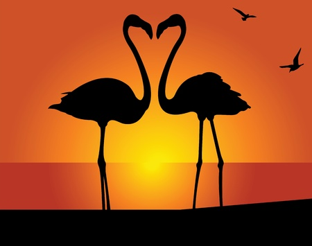 couple beach sunset: Silhouette of the flamingo on a background of the evening sky Illustration