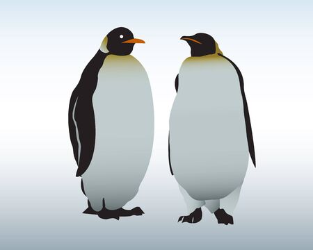 Two penguins stand on snow  The Antarctica Stock Vector - 16724388