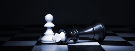bandwagon: A pawn and the won king. Game of chess