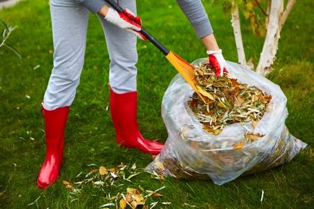 Woman in red boots raking Fall leaves with rake.
