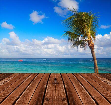 dais: Palms on the beach. Tropical summer vacation
