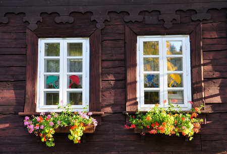 flowers in the windows photo