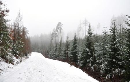 republik: landscape in winter, the Czech Republik