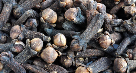 detailed view: Detailed view of spices - cloves