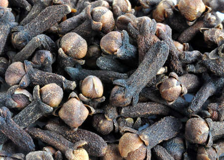 aromatic: Aromatic spices - cloves Stock Photo