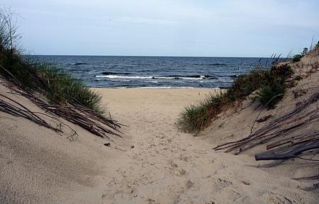 swimm: coast of the Baltic Sea