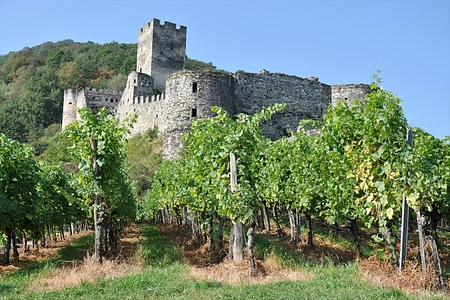 Ruinen Catsle, Österreich, Europa Standard-Bild - 87374270