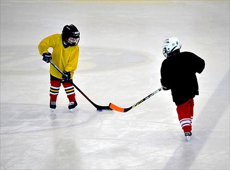 Sportler, die Eishockey auf der Eisbahn spielen Standard-Bild - 89739380