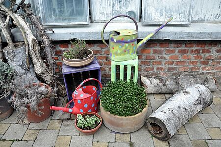 garden yard and watering can