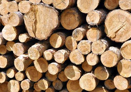 brown wood  background