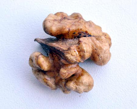 fresh brown Walnut