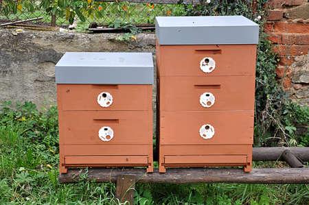 detail view, small apiary Standard-Bild