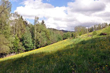 landscape Sumava, Czech republic, Europe