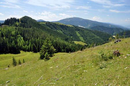 mountain Alps in summer, Austria, Europe