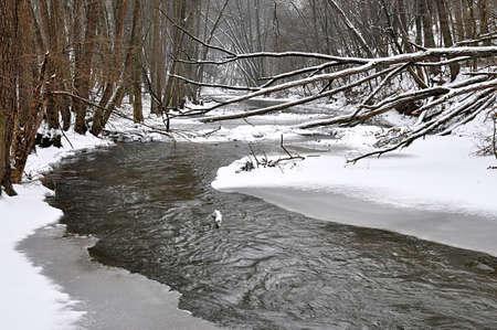 river Rokytna in winter, Czech republic, Europe