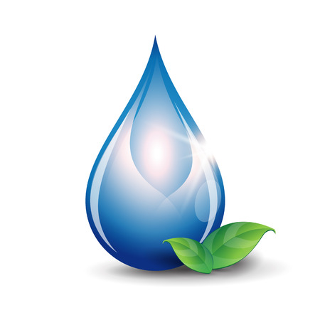 leaf water drop: Water drop vector