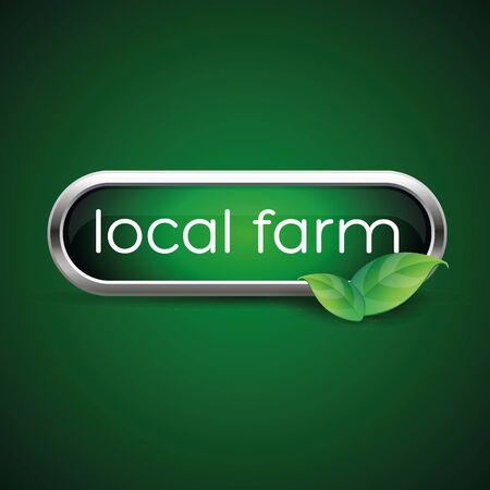 preservatives: Etiqueta de los alimentos de granja local, insignia o sello Vectores