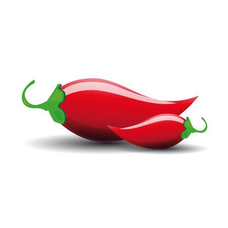 jalapeno: Hot jalapeno or chili vector