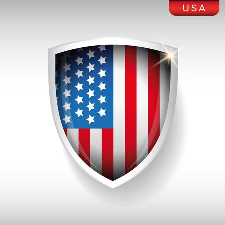 vector raster background: USA flag shield vector