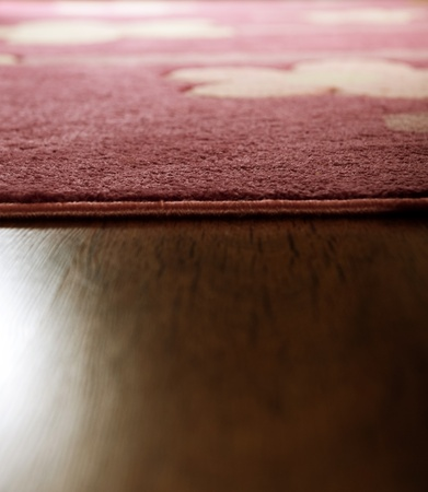 Closeup of the brown wood parquet and stylish carpet Stock Photo - 9883948