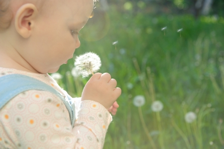 Little baby girl blowing on dandelion. Sunlight effect photo