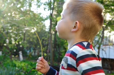 Little boy is blowing on dandelion. Sunlight effect. photo